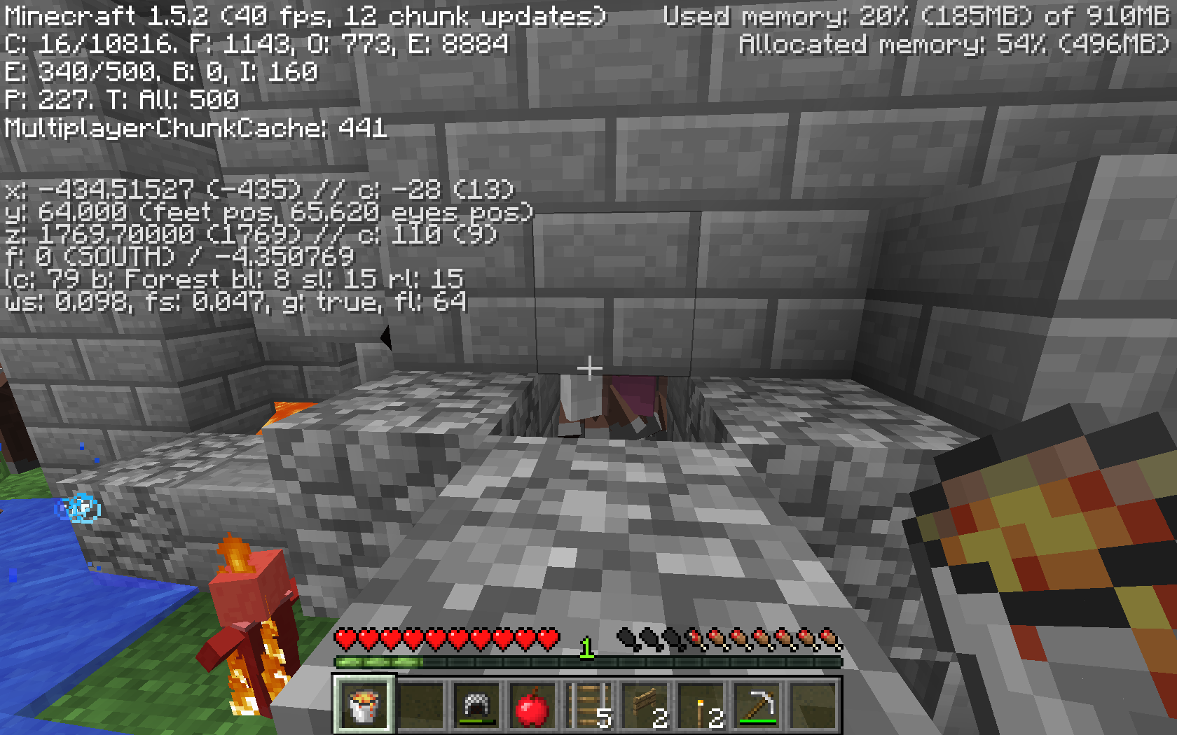 More villagers inside